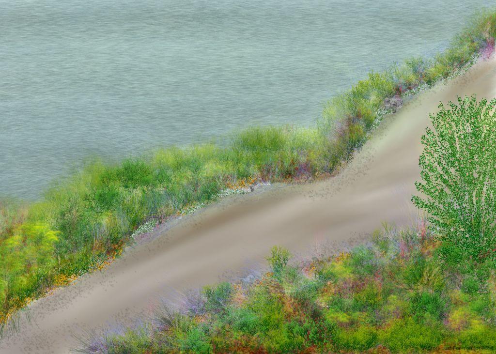 Path Over Ocean